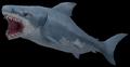 Great White Shark (World of Warcraft)