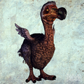 Dodo (American McGee's Alice)