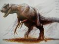 Aciedactylus