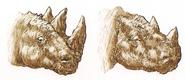 Diablosaurus head