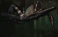 Giant Whip Spider (Resident Evil)