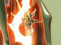 Unnamed Dragon Titan