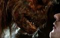 Hyena-Swine