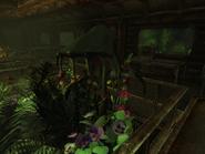 Spore Plant