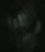 Tunnel Stalker