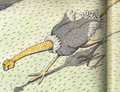 Ostricheetah