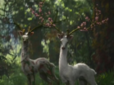 Mutant Deer (Annihilation)