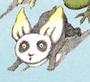 Pandaffodil