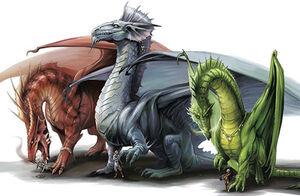 Dragondd