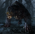 Bear (Metro Last Light)