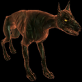 Hellhound (The Witcher)