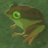 Tireless Frog