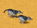 Armadillowolf