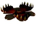 Carnivorous Lily Pad