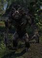 Troll (Elder Scrolls)