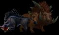 Boar (World of Warcraft)