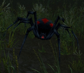 Black Widow (World of Warcraft)