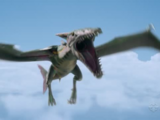 Pteracuda