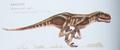 Arsarticaedes asilis