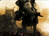 Elephant (300)