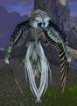 Owl (World of Warcraft)