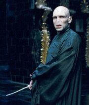 Harry-potter-Voldermort