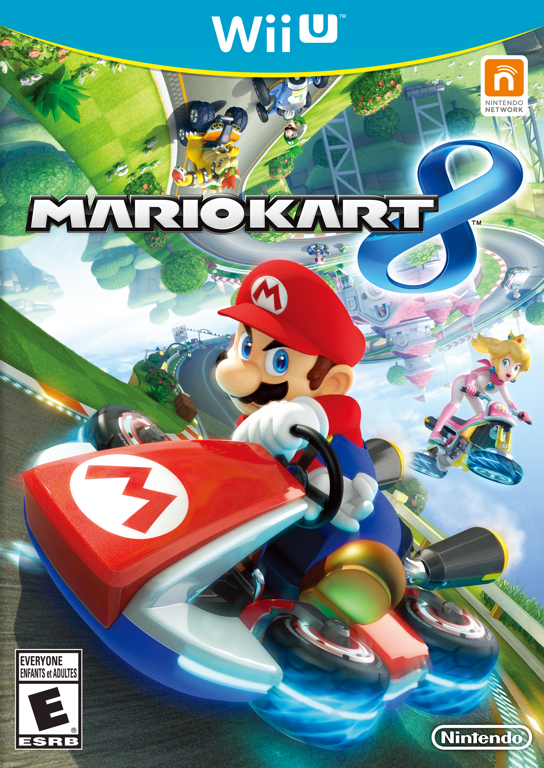 mario kart 8 non human video game flattenings wikia fandom powered by wikia. Black Bedroom Furniture Sets. Home Design Ideas