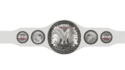 Womens tag team titles