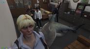 Lauren and the shark