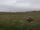 Nólsoy - północny krajobraz.jpg