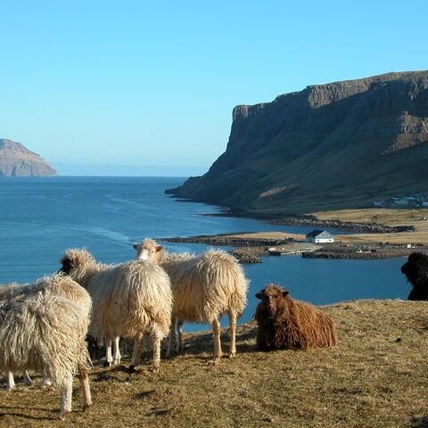 Widok na wyspę z osady <a class=