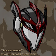 Portrait raven helmet
