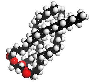 Fatty-acid