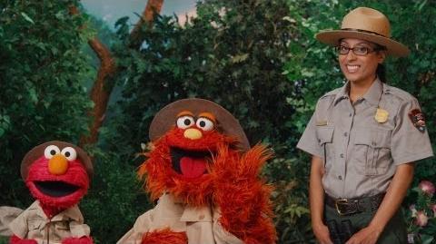 Sesame Street Gateway Seasons