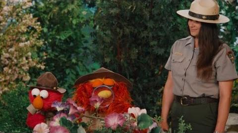 Sesame Street Grand Canyon Seasons