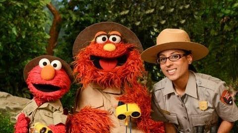 Sesame Street Gateway Families