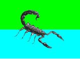 Scorpionia