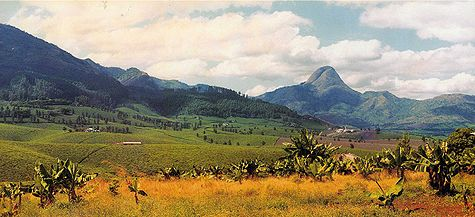 Zwartkloof Mountains Pasambiek