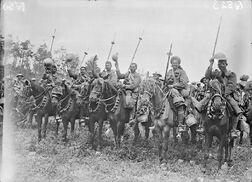 Irregular Cavalry