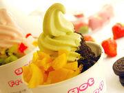 優格霜淇淋-正統美國優洛霜淇淋