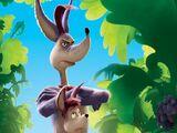 Sour Kangaroo