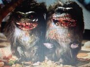 Critters as Saluk's Men