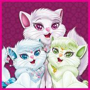 Lulu Caty, Susu Caty and Mimi Caty