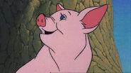 Wilbur-Screenshots-charlottes-web-38784546-1128-635