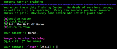 Turgons Warrior Training