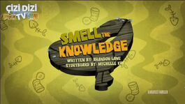 Smelltheknowledgex