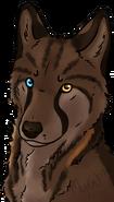Solveig valp avatar