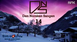 DNS14