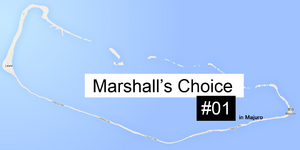 Marshall's Choice 01