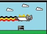 Belgium nyan cat
